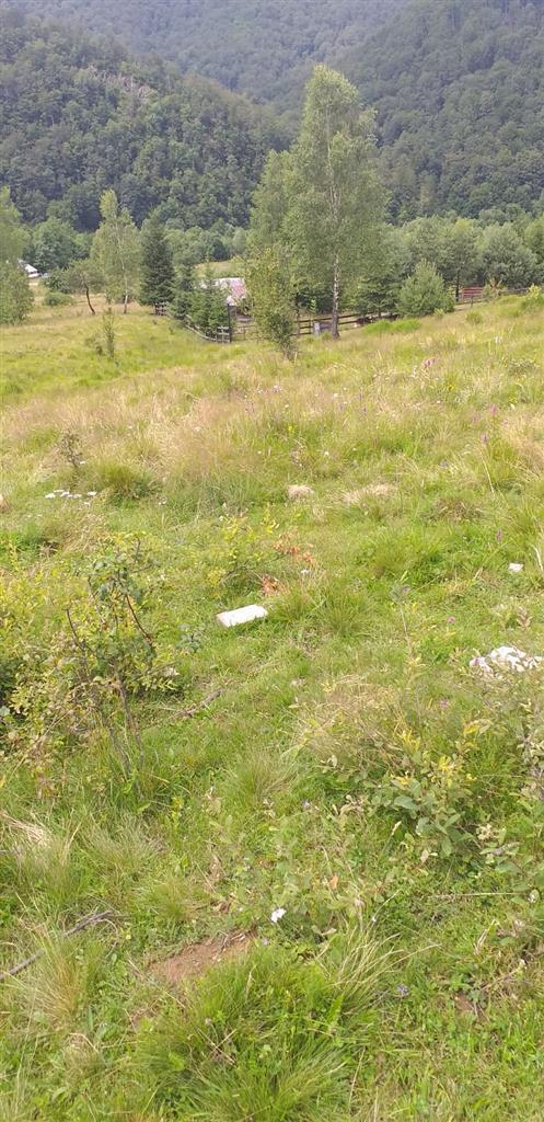 Teren, Zona Lac Bulz, 2000 mp, front40 m, COMISION 0
