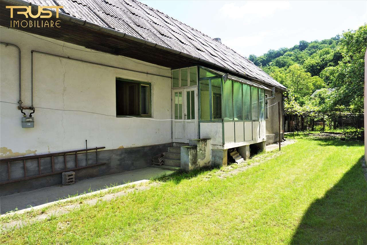 Proprietate de vanzare, zona centrala casa, curte, gradina 1225 mp