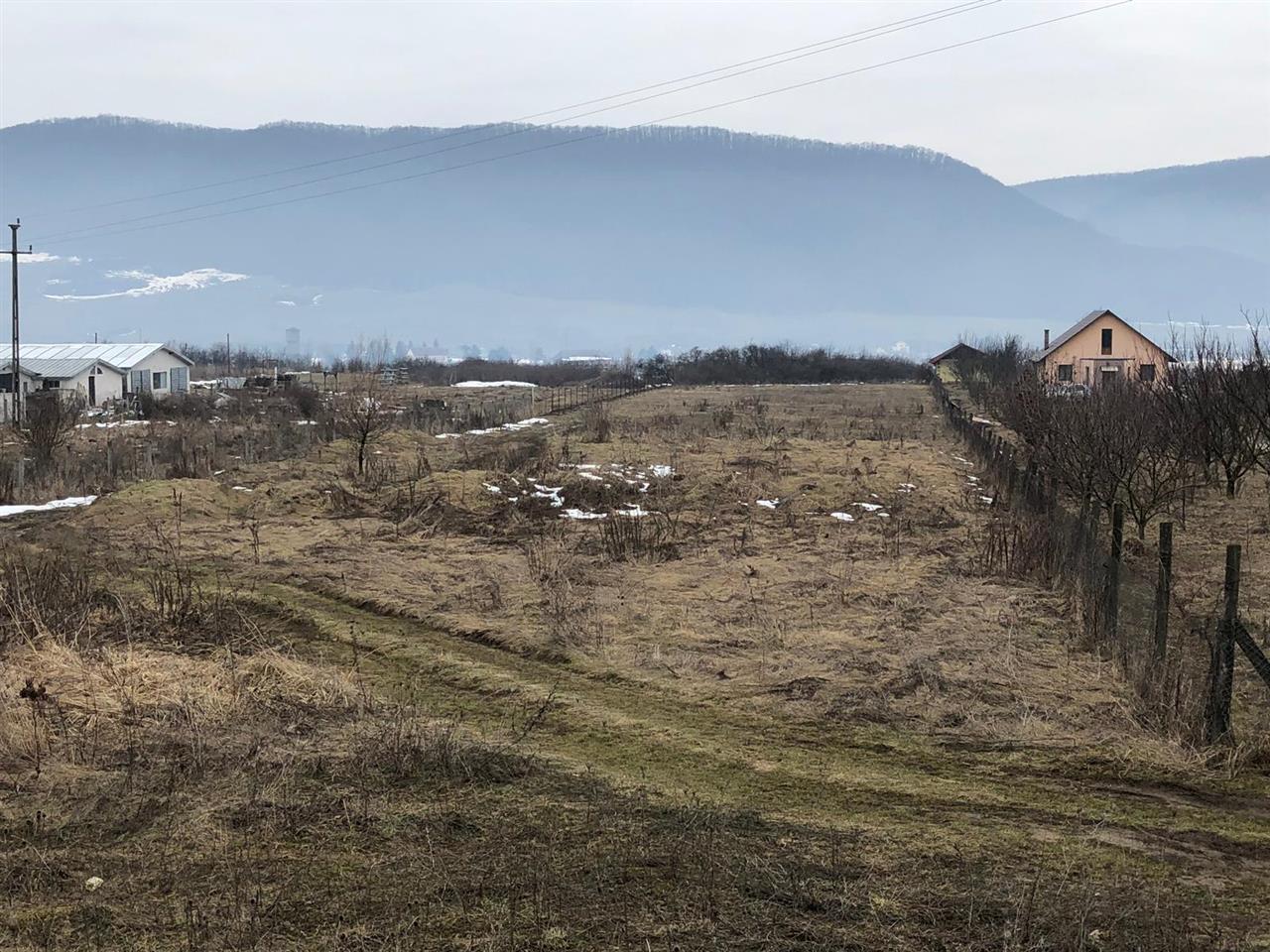 Teren extravilan, 4307 mp, zona Crainimat, front stradal 25.12